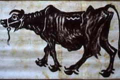 vaca-ad-main